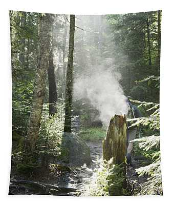 Ammonoosuc Ravine Trail - White Mountains New Hampshire Usa Tapestry
