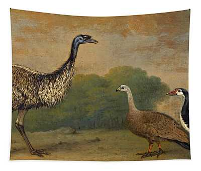 An Emu A Cape Barren Goose And A Magpie Goose In A Landscape Tapestry