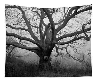 Ancient Oak Tree V - Sheep Pasture Tapestry