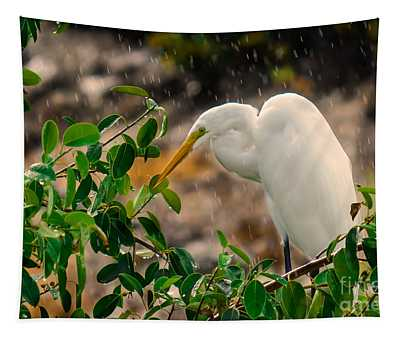 Tapestry featuring the photograph And I Am Having A Good Day by Gary Keesler