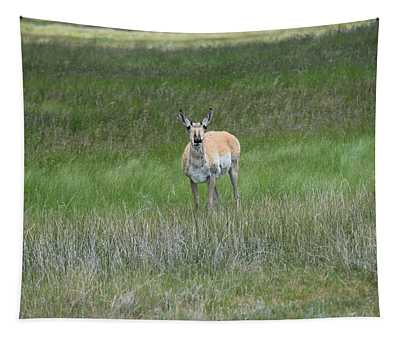 Prong Horned Antelope Lake John Swa Co Tapestry