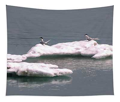 Arctic Terns On A Bergy Bit Tapestry