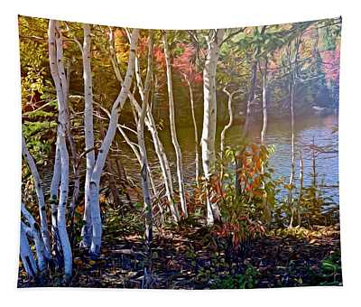 Aspen Trees In The Fall Tapestry