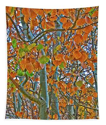 Tapestry featuring the photograph Aspen Trees by Mae Wertz