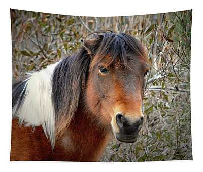 Assateague Island Pony Patricia Irene Tapestry
