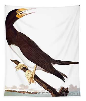 Audubon: Booby Tapestry