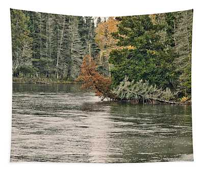 Ausable River 9899 Tapestry