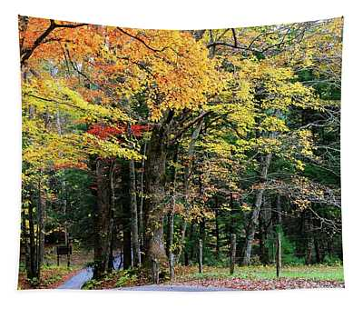 Autumn Along Cades Cove Loop Road Tapestry