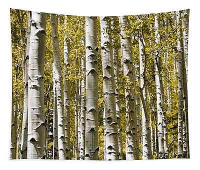 Autumn Aspens Tapestry