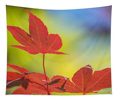 Autumn Colours Tapestry