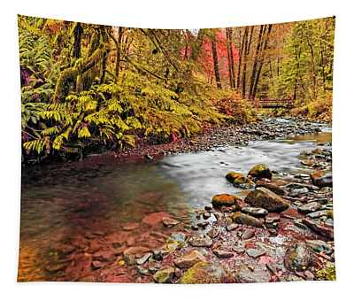 Autumn In An Oregon Rain Forest  Tapestry