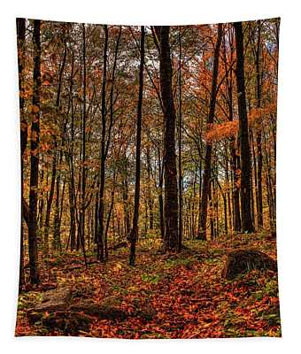 Autumn On The Ice Age Trail Tapestry
