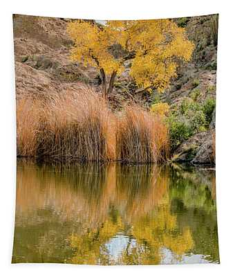 Autumn Reflection At Boyce Thompson Arboretum Tapestry