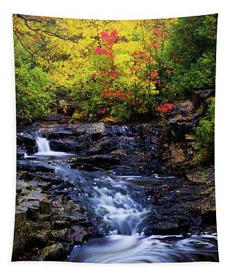 Autumn Swirls Tapestry