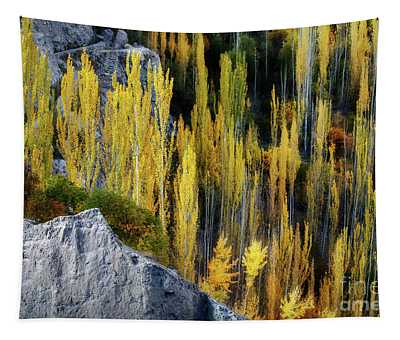 Autumnal Fireworks  Tapestry