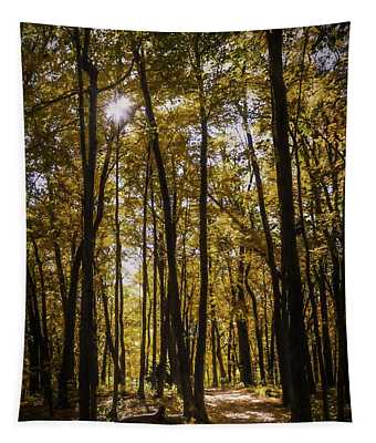 Autumns Fire Tapestry