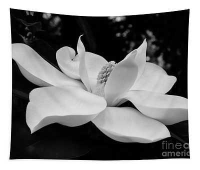 B W Magnolia Blossom Tapestry
