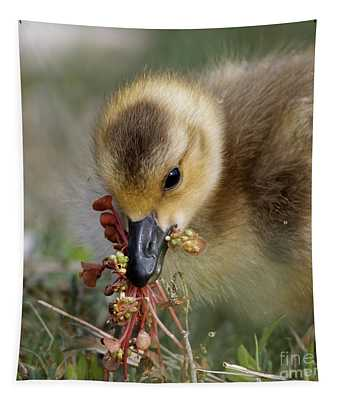 Baby Chick With Water Flowers Tapestry