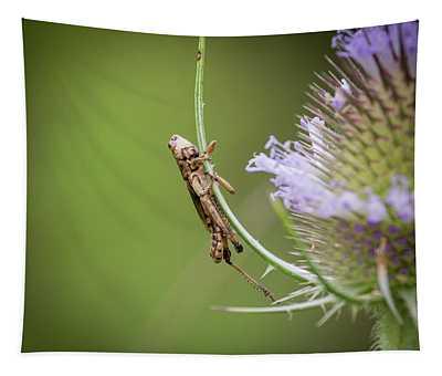 Baby Grasshopper Tapestry
