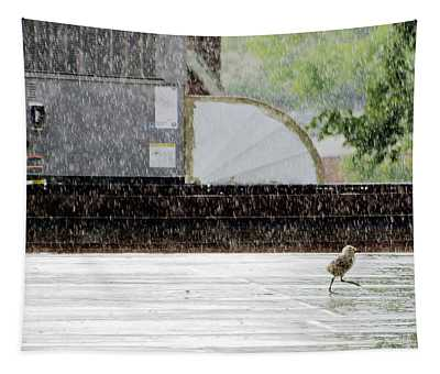 Baby Seagull Running In The Rain Tapestry