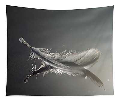 Backlit Feather Tapestry