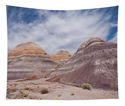 Badlands Formation At Blue Mesa Tapestry
