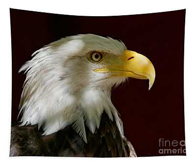 Bald Eagle - Majestic Portrait Tapestry