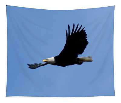 Bald Eagle Soaring High Tapestry