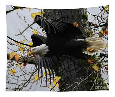 Bald Eagle Takes Flight Tapestry