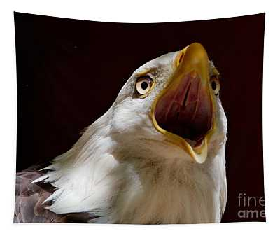 Bald Eagle - The Great Call Tapestry