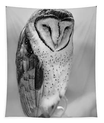 Barn Owl II Tapestry