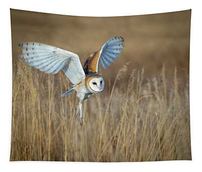 Barn Owl In Grass Tapestry