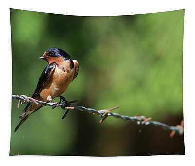 Barn Swallow II Tapestry