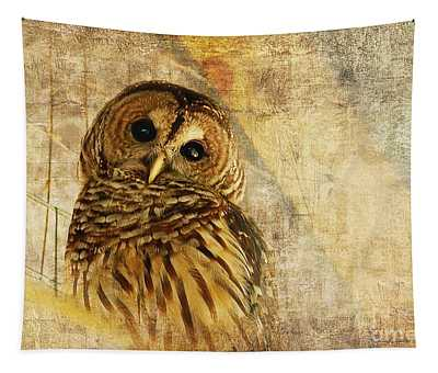 Cute Bird Photographs Wall Tapestries