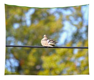 Basking Turtle Dove Tapestry