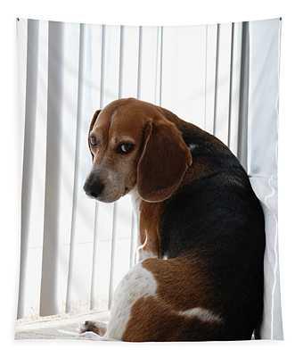 Beagle Attitude Tapestry