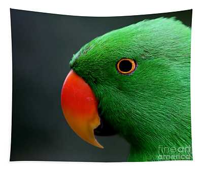 Beautiful Eclectus Parrot Tapestry