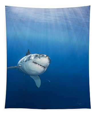 Beautiful Great White Tapestry