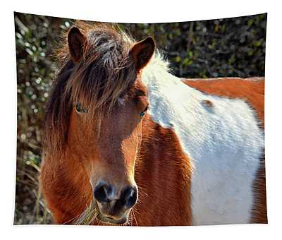 Beautiful Mare Ms. Macky Tapestry