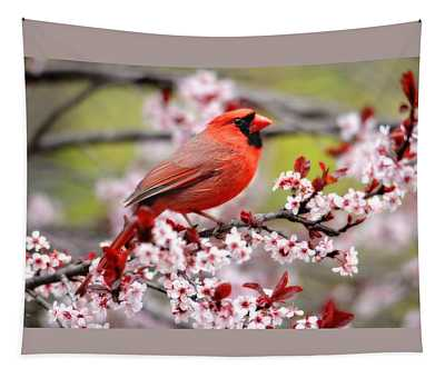 Beautiful Northern Cardinal Tapestry