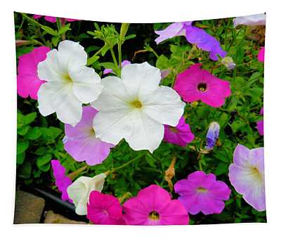 Beautiful Petunia Flower 4 Tapestry