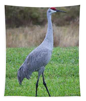 Beautiful Sandhill Crane Tapestry