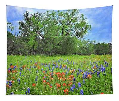 Beautiful Texas Spring Tapestry
