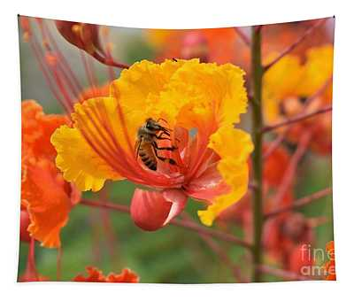 Bee Pollinating Bird Of Paradise Tapestry
