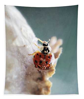 Beetle And Drops Tapestry