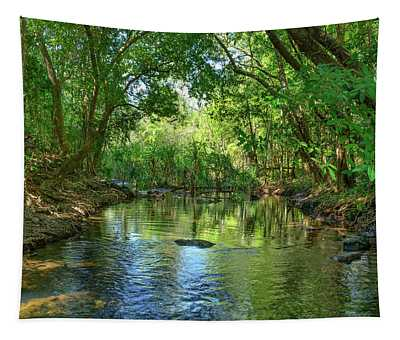 Berry Springs Tapestry