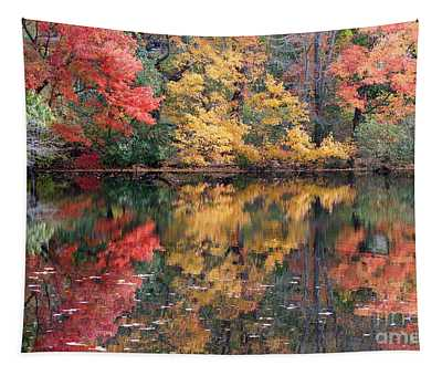 Betty Allen's Vibrant Colors Tapestry
