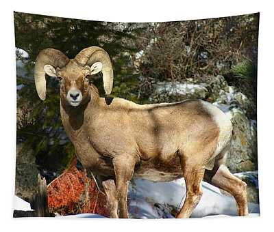 Tapestry featuring the photograph Bighorn Ram by Perspective Imagery