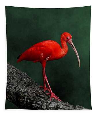Bird On A Catwalk Tapestry