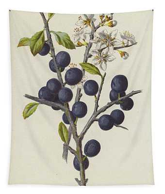 Blackthorn Tapestry